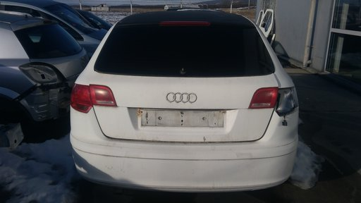 Aeroterma Audi A3 8P 2005 Hatchback 1896