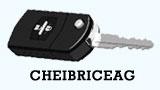 CheiBriceag