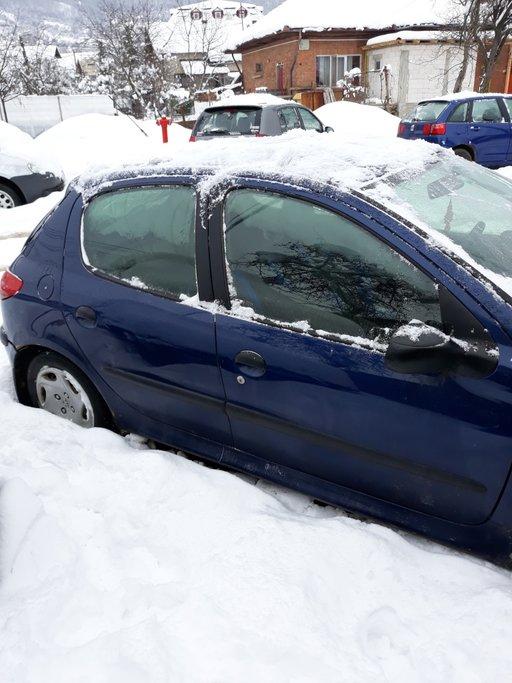 Clapeta acceleratie Peugeot 206 2000 Hatchback 1.9 xrd