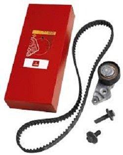 Kit distributie Logan diesel Motrio 8671019547