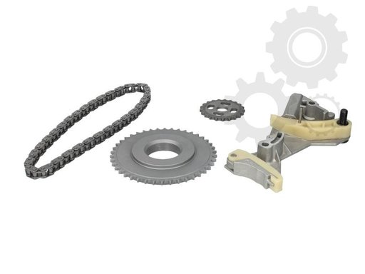 Kit / Set reparatie lant pompa ulei AUDI A4, A6, WV PASSAT 2.0 TDI BMA,BKP,BMP,BPW,BLB,BNA,BRE,BRF