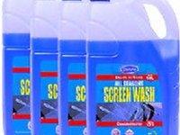 Lichid parbriz iarna XT SCREENWASH -20 grade 3L