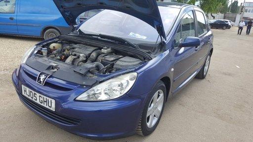 Panou sigurante Peugeot 307 2005 hatchback 1.6HDi