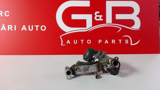 Racitor gaze EGR BMW 2.0D 177CP Euro5