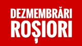 RBM DEZMEMBRARI