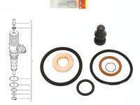 Set reparatie injector Audi , VW , Skoda Seat 2.0 Diesel BMM BMP