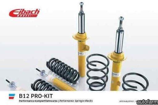 Set suspensie arcuri elicoidale / amortizoare MERCEDES-BENZ E-CLASS W212 Producator EIBACH E90-25-021-02-22