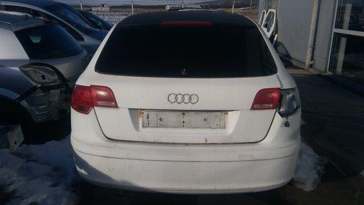 Usa stanga spate Audi A3 8P 2005 Hatchback 1896